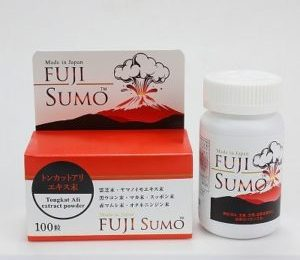 fuji-sumo