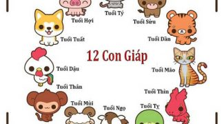 hinh-anh-12-con-giap