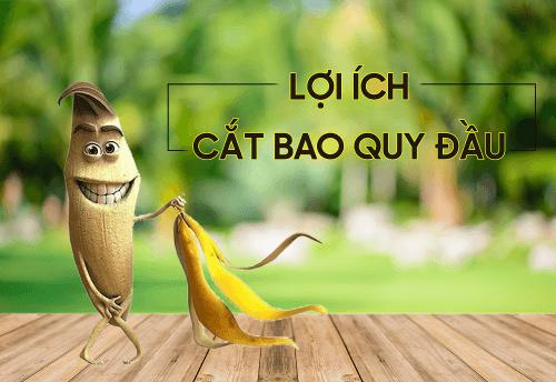 loi-ich-cat-bao-quy-dau