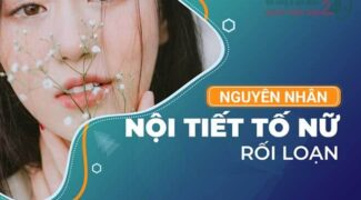 roi-loan-noi-tiet-to