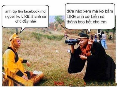 tai-anh-che-duong-tang-hai-bua-nhat-comment-facebook (32)