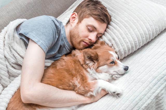 Trước khi chúc ngủ ngon
