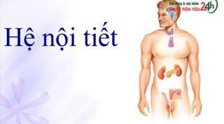 Hormon-Nội tiết
