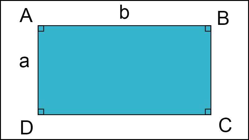diện tích hình chữ nhật 1